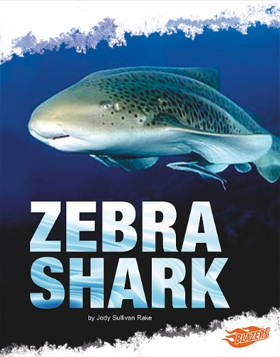 9781429654166: Zebra Shark (Shark Zone)