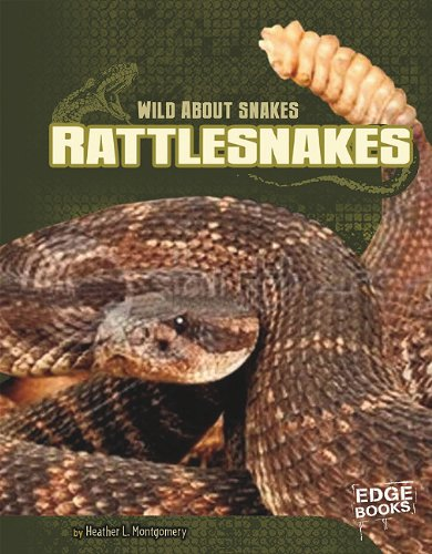 Rattlesnakes (Library Binding): Heather L. Montgomery