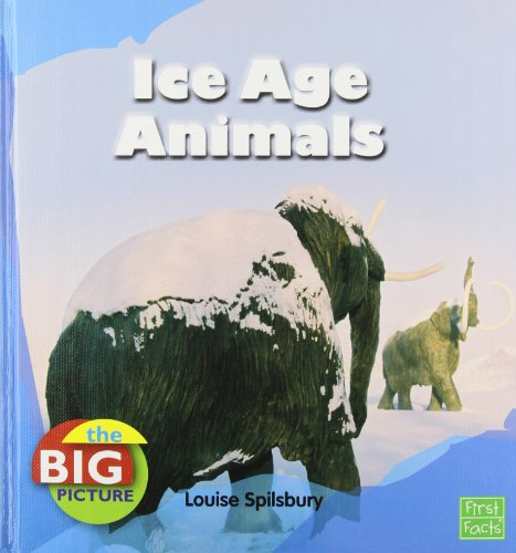 9781429655088: Ice Age Animals (The Big Picture: Climate)