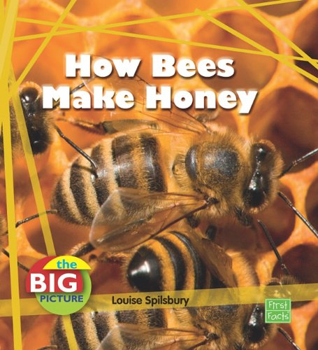 9781429655354: How Bees Make Honey (The Big Picture: Food)