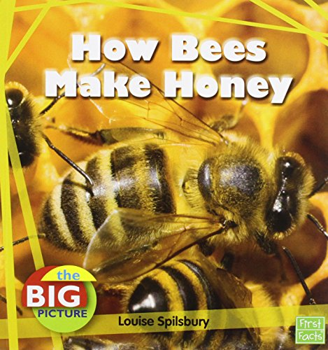 How Bees Make Honey (Big Picture: Food): Spilsbury, Louise