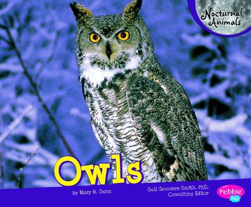 9781429659970: Owls (Nocturnal Animals)
