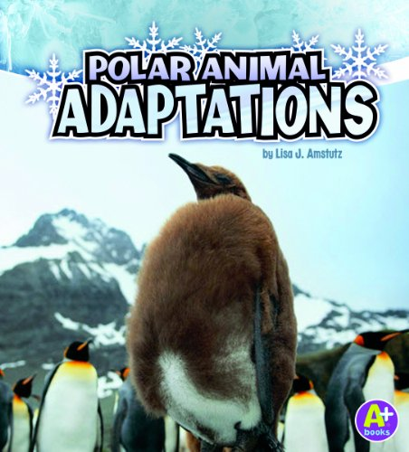 9781429660310: Polar Animal Adaptations (Amazing Animal Adaptations)