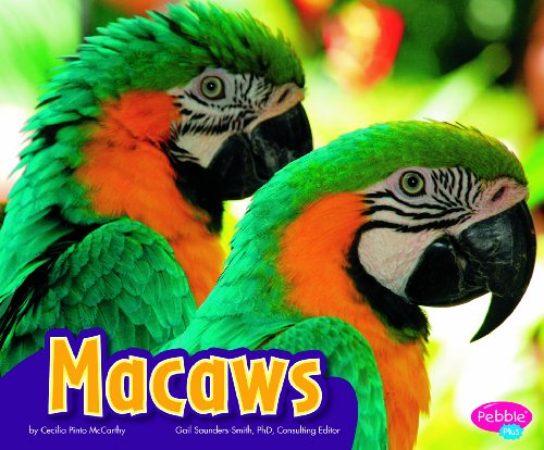 9781429660495: Macaws (Pebble Plus)