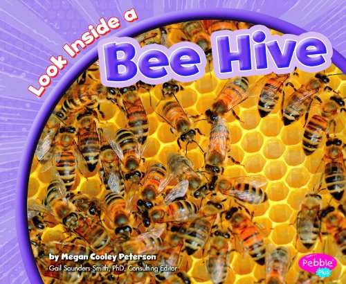 9781429660754: Look Inside a Bee Hive (Look Inside Animal Homes)