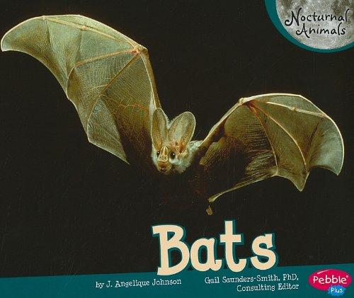 9781429661904: Bats (Nocturnal Animals)