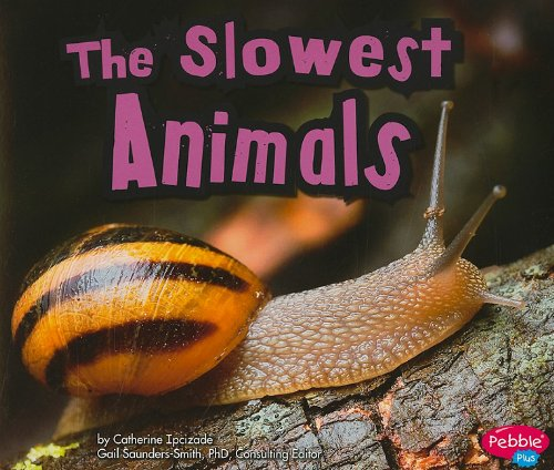 9781429662093: The Slowest Animals (Extreme Animals)