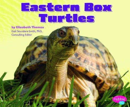 9781429666435: Eastern Box Turtles (Reptiles)