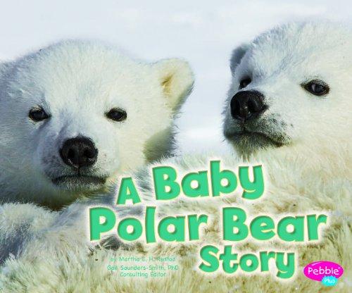 9781429670937: Baby Polar Bear Story (Baby Animals)