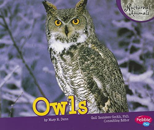 9781429671194: Owls (Nocturnal Animals)