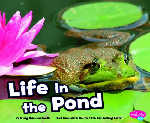 9781429671491: Life in the Pond (Habitats around the World)