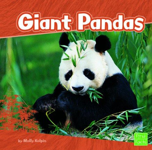 Giant Pandas (First Facts: Bears): Kolpin, Molly