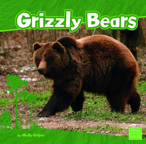 9781429671873: Grizzly Bears (First Facts: Bears)