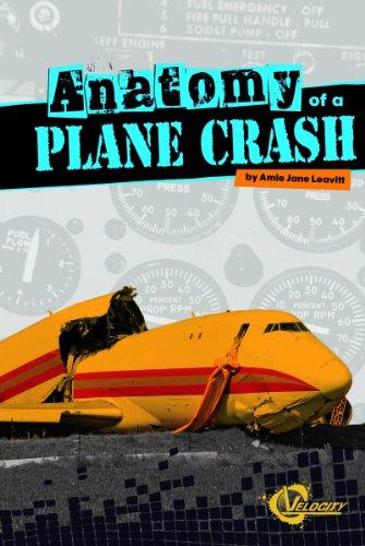 9781429673617: Anatomy of a Plane Crash (Disasters)