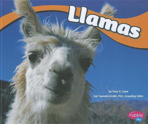 Llamas (Library Binding): Mary R. Dunn