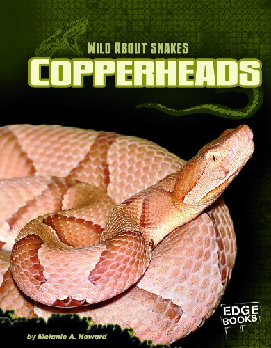 Copperheads (Wild about Snakes): Howard, Melanie A.