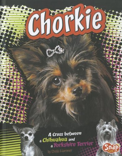 Chorkie: A Cross Between a Chihuahua and a Yorkshire Terrier: Johnson, Sheri A.