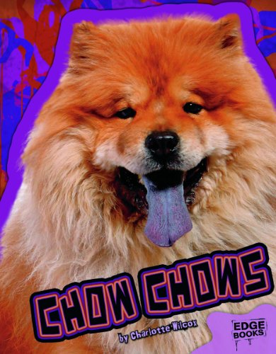 9781429677127: Chow Chows (All About Dogs)