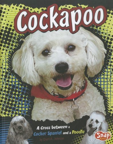 9781429677639: Cockapoo: A Cross Between a Cocker Spaniel and a Poodle (Snap Books: Designer Dogs)