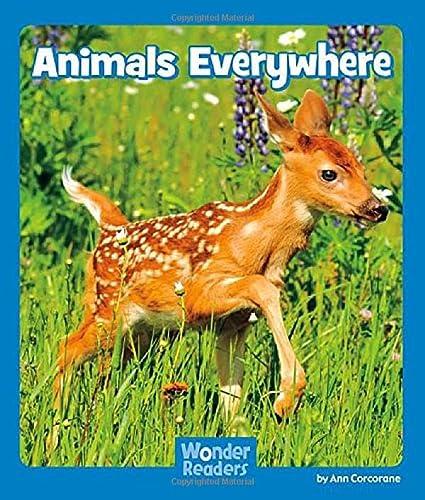 Animals Everywhere: d'aulaire, ingri &
