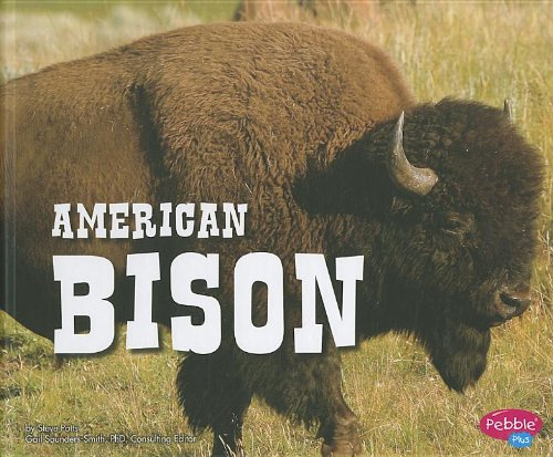American Bison (North American Animals): Potts, Steve
