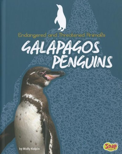 9781429684316: Galapagos Penguins (Endangered and Threatened Animals)