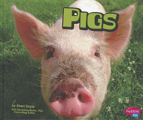 9781429686471: Pigs (Farm Animals)