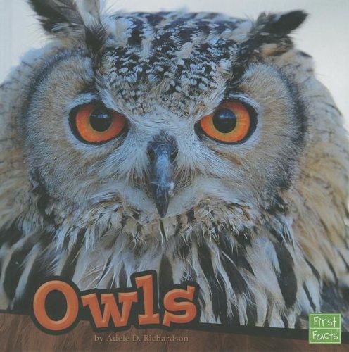 9781429686846: Owls (Birds)