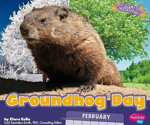 9781429687317: Groundhog Day (Let's Celebrate)