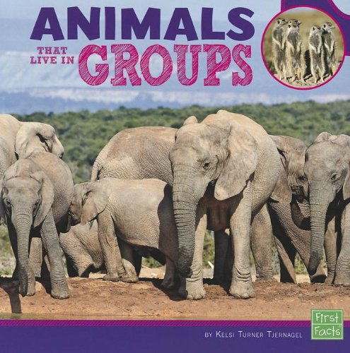9781429693080: Animals That Live in Groups (Learn about Animal Behavior)