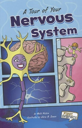9781429693288: A Tour of Your Nervous System (First Graphics: Body Systems)
