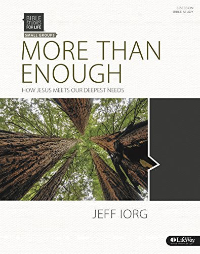 9781430043188: More Than Enough: How Jesus Meets Our Deepest Needs - Bible Study Book
