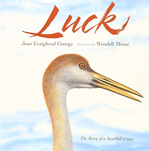 9781430103325: Luck (1 Hardcover/1 CD): The Story of a Sandhill Crane