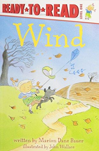 9781430108313: Wind