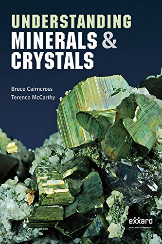 Understanding Minerals and Crystals: Bruce Cairncross; Terence McCarthy