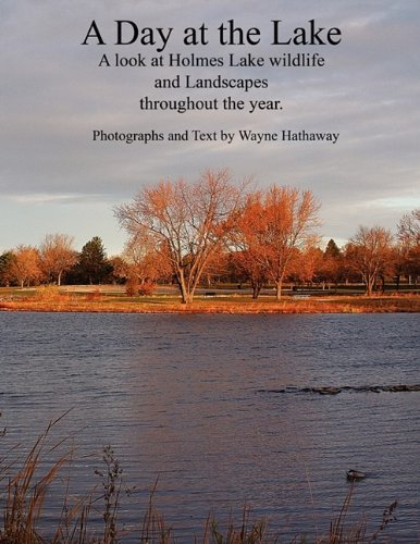 9781432707781: A Day at the Lake: A Look at Holmes Lake Wildlife and Landscapes Throughout the Year.