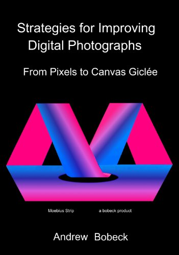 9781432789909: Strategies for Improving Digital Photographs: From Pixels to Canvas Giclee