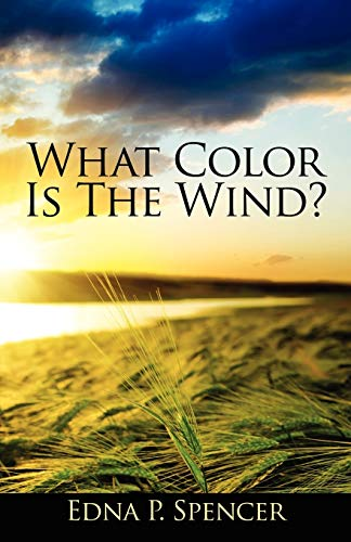 9781432793784: What Color Is the Wind?