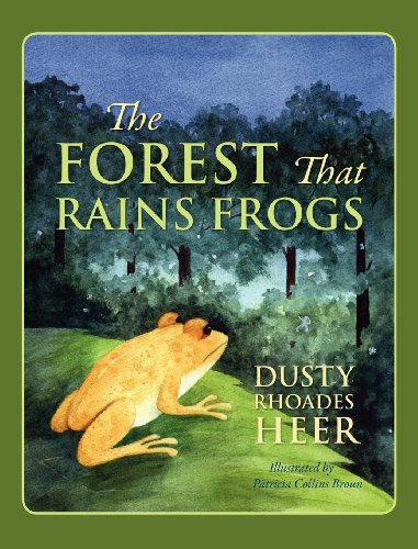9781432795214: The Forest That Rains Frogs