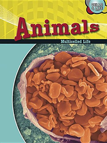 9781432900366: Animals: Multicelled Life (Cells and Life)