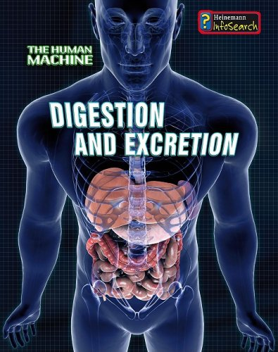 9781432909123: Digestion and Excretion (Human Machine)