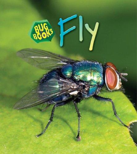 Fly (Bug Books): Karen Hartley, Chris
