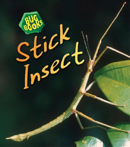 9781432912468: Stick Insect (Bug Books)