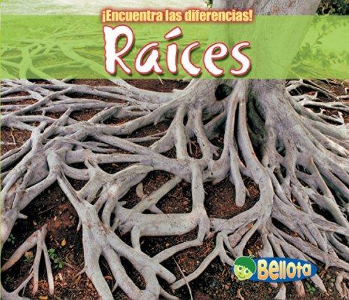 9781432917357: Raíces (¡Encuentra las diferencias! Plantas) (Spanish Edition)