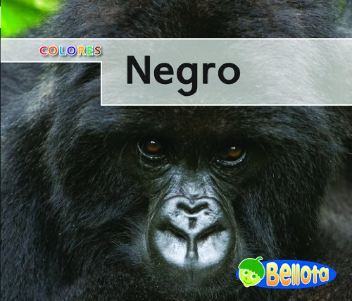 9781432918934: Negro (Colores) (Spanish Edition)