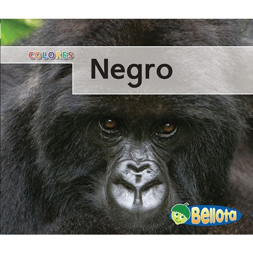 9781432919030: Negro (Colores) (Spanish Edition)