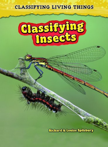 Classifying Insects (Classifying Living Things): Solway, Andrew