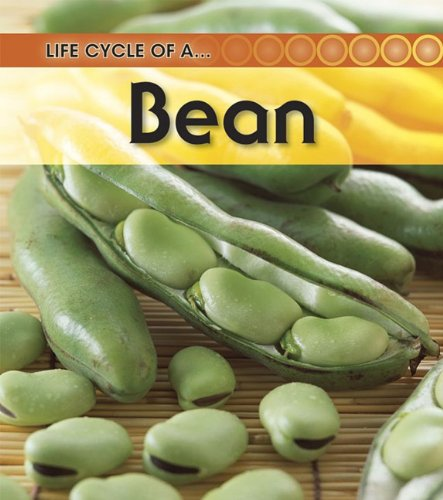 Broad Bean (Life Cycle of a . . .): Angela Royston