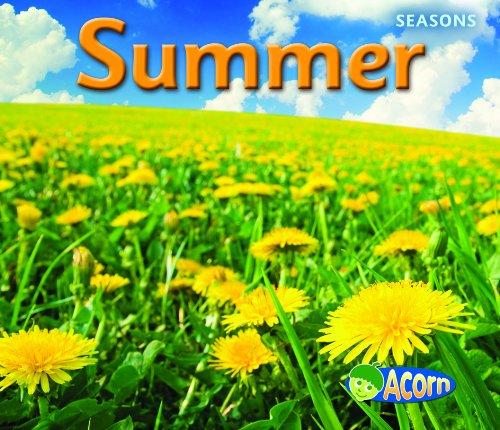 9781432927295: Summer (Seasons)