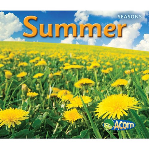 9781432927349: Summer (Seasons)